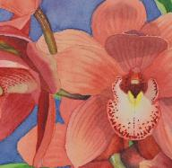 Orchid Inflorescence, watercolor ©Anna Dal Pino